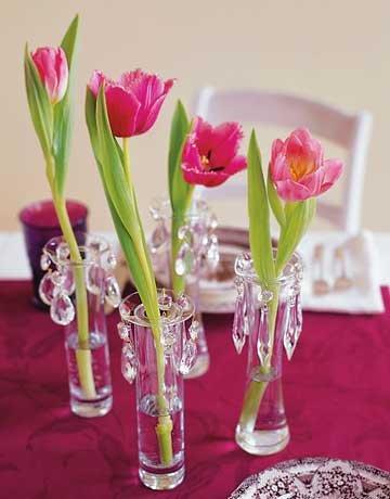 54ea3c5439bdb_-_tulips-de