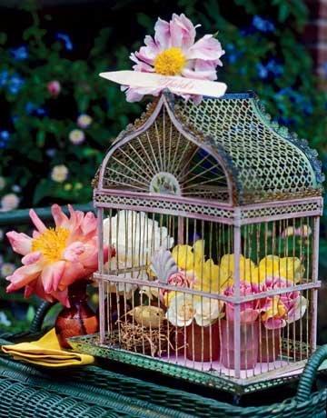 54ea3c59207a8_-_birdcage-de